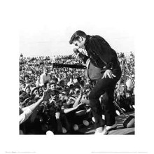 Elvis Presley - Tupelo poster print by  Unknown