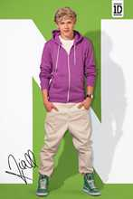 One Direction - Niall poster print by  Novelty