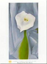 Calla Lilly on Grey poster print by Georgia O'Keeffe