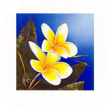 Frangipani Bouquet poster print by Karen Foley