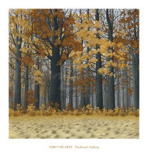 Autumn Wood poster print by  Arzt
