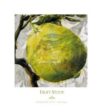 Fruit Study I poster print by Dennis Carney