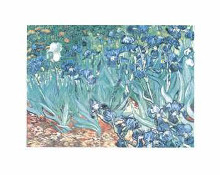 Irises in the Garden poster print by Vincent van Gogh