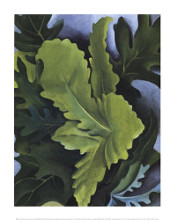 Green Oak Leaves poster print by Georgia O'Keeffe