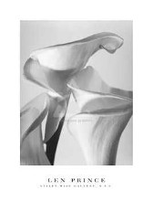 Three Calla Lilies, 1996 poster print by  Prince