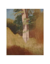 Trees In The Blue Sky poster print by  Redon