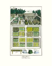 Garden II poster print by  Unknown