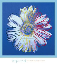 Daisy, C 1982 (Blue On Blue) poster print by Andy Warhol