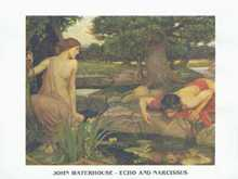 Echo and Narcissus poster print by John William Waterhouse