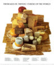 Cheeses of the World poster print by  Atelier Nouvelles Images