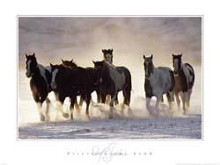 Paints In The Snow poster print by David Stoecklein