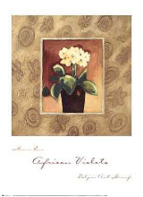 African Violets poster print by Maria Eva