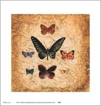 Papillons III poster print by Claudette Beauvais