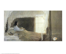 Chambered Nautilus poster print by Andrew Wyeth