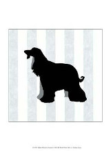 Afghan Hound In Neutral poster print by Christine Lucas