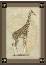Giraffe with Border II poster print by  Unknown