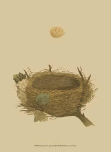 Antique Nest Egg II poster print by  Morris