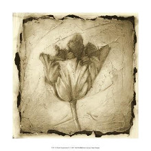 Floral Impression II poster print by Ethan Harper