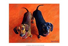 Double Dachsies poster print by Robert McClintock