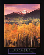 Explore Aspen Grove poster print by  Unknown