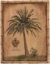 Caribbean Palm III With Bamboo Border poster print by Betty Whiteaker