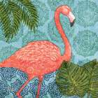 Bahama Flamingo I poster print by Paul Brent