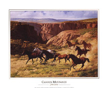 Canyon Mustangs poster print by John Leone