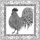 BandW Rooster II poster print by Cindy Shamp