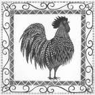 BandW Rooster poster print by Cindy Shamp