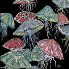 Jelly Fish II poster print by Shanni Welsh