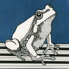 Pop Frog in Black and White on blue background poster print by Fabio Alfonso