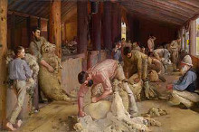 Shearing the rams poster print by Tom Roberts