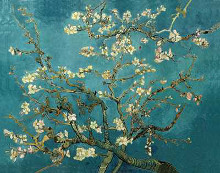 Almond Blossom poster print by Vincent van Gogh