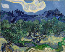 The Olive Trees poster print by Vincent van Gogh