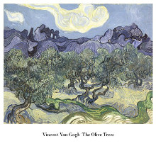 The Olive Trees, c.1889 poster print by Vincent van Gogh