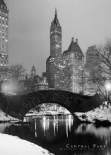 Central Park poster print by  Unknown