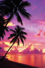 Tahitian Sunset poster print by  Unknown