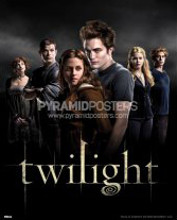 Twilight (Group) poster print by  Novelty