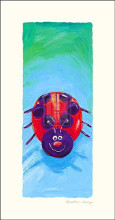 Bugs IV poster print by K Mawdsley