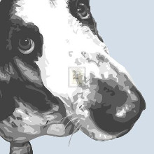Bassett Hound poster print by Emily Burrowes