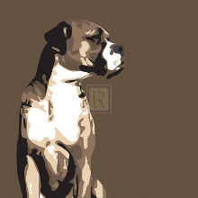 Boxer poster print by Emily Burrowes