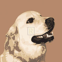 Golden Retriever poster print by Emily Burrowes