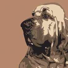 Bloodhound poster print by Emily Burrowes