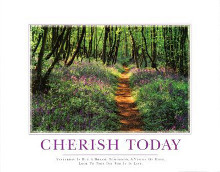 Cherish Today poster print by  SuccessCorner