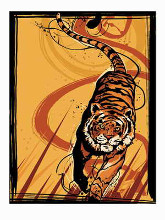 Tiger poster print by Martin French