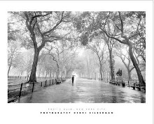 Poet's Walk, New York City poster print by Henri Silberman