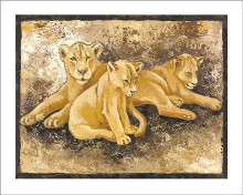 Family Of Lions poster print by Philippe Genevrey