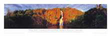 Wangi Falls poster print by Phil Gray